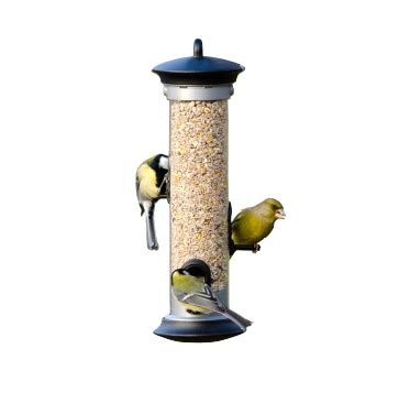 seed feeders bird feeders cj wildlife