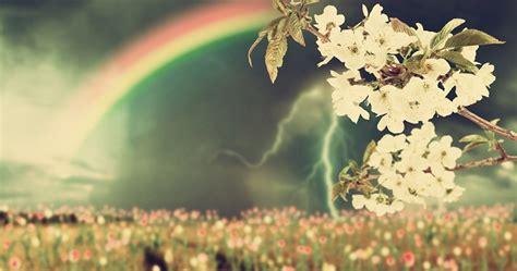 Fleurs Qui Resistent Au Vent by Ces Plantes Qui R 233 Sistent 224 Tout Le Mag De Flora Le