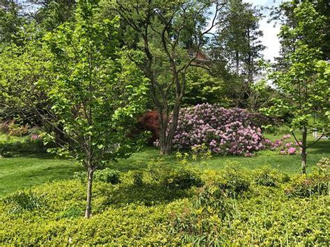 Smith Botanical Gardens Smith College Botanic Garden Northton Ma Top Tips Before You Go With Photos Tripadvisor