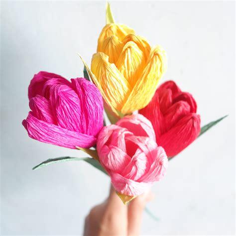Paper Tulips - crepe paper tulips edcel