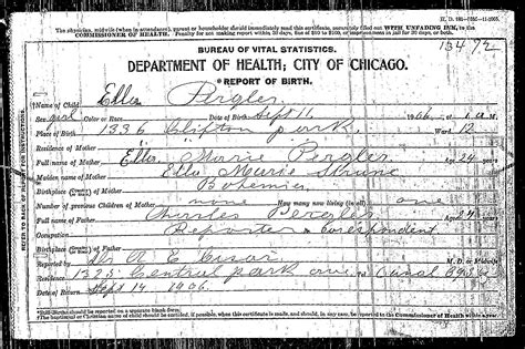 Chicago Birth Records Pergler Family History Charles Karel Pergler 1882 1954