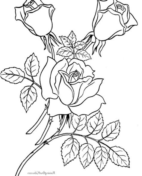 coloring book embroidery 17 best images about embroidery patterns on