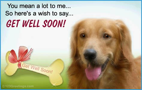 where to get puppies get well soon gif images
