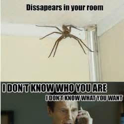Afraid Of Spiders Meme - scared quotes like success