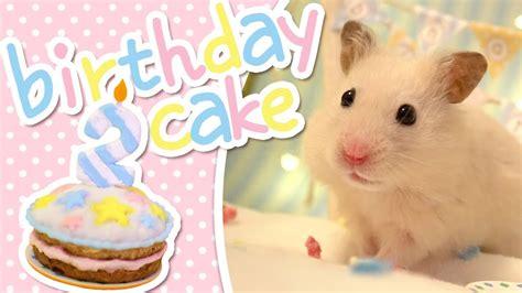Hamster Kitchen by Birthday Cake Hamster Kitchen