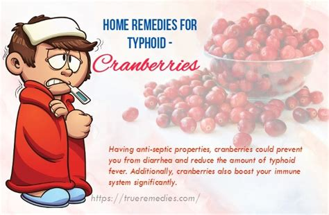 what is typhoid disease women health 28 natural home remedies for typhoid fever and headache