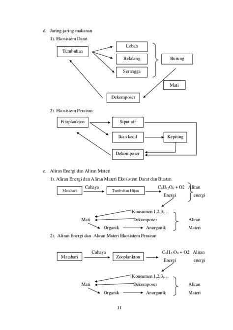 contoh laporan jaringan tumbuhan gambar contoh jaring makanan minimal 10 organisme terlibat