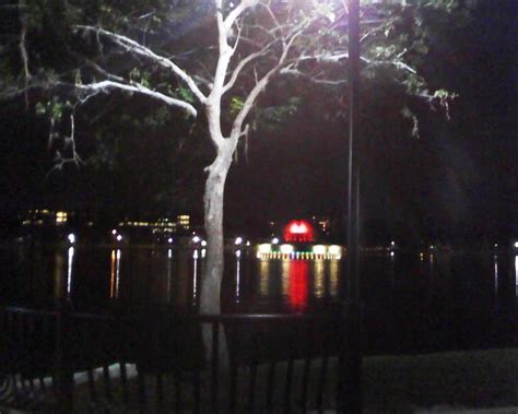 lake eola new years lake eola s new show lights up downtown as the