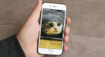 imagenes gif iphone c 243 mo convertir las live photos de iphone en gifs animados