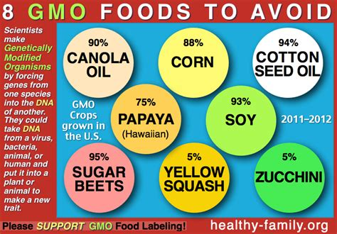 gmo food health effects gluten free diet with nutrition i ve heard of a gmo but what is it exactly hello dollface