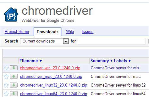 chrome driver download selenium tester in you
