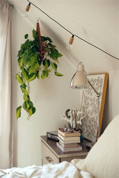 indoor plant for bedroom bedroom