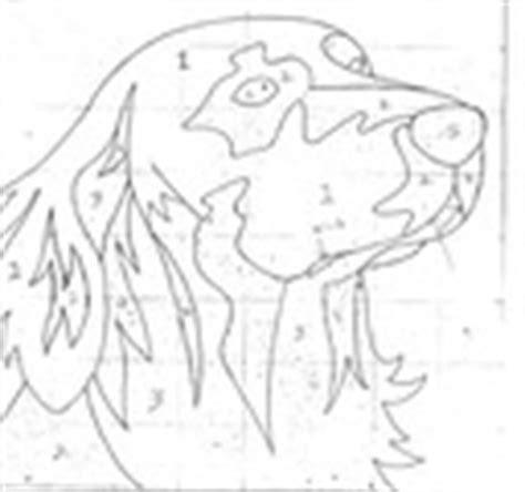 golden retriever puppy teeth falling out patterns animal nolahooks nola nolahooks