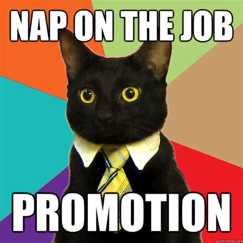 Nap Meme - nap on the job promotion business cat quickmeme