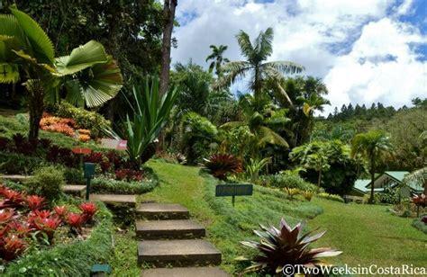 Botanic Gardens Rockhton Botanical Gardens Sarchi Costa Rica Garden Ftempo