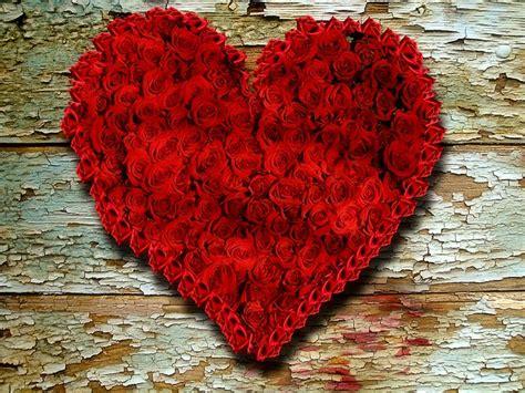 latar belakang film filosofi kopi ilustrasi gratis kayu mawar latar belakang gambar