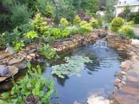 pond construction backyard koi pond design examples pacific ponds
