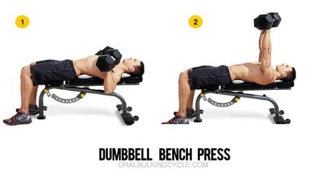 45 lb dumbbell bench press 90 pound dumbbell bench press 28 images kimbo bench