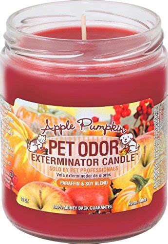 odor eliminating candles  pet odors scout