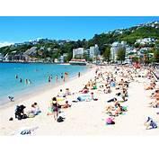 Oriental Bay Beach Wellington