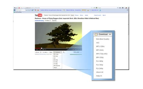 download youtube streaming how to download flash streaming videos from sites like