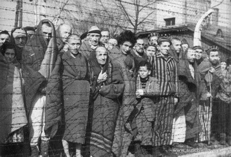 la bibliotecaria de auschwitz 8408009516 liberated prisoners auschwitz birkenau state museum archives don t forget no olvidar