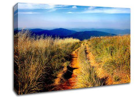 landscape canvas prints hiking path landscape canvas stretched canvas