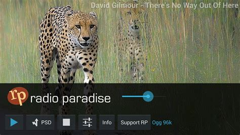 radio paradise radio paradise android apps on google play
