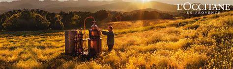 Calendrier De L Avent L Occitane Suisse L Occitane En Provence Produits De Beaut 233 Perfecthair Ch