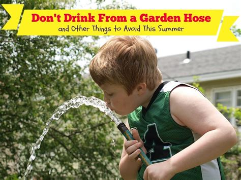 Garden Hose You Can Drink From Don T Drink From A Garden Hose And Other Things To Avoid