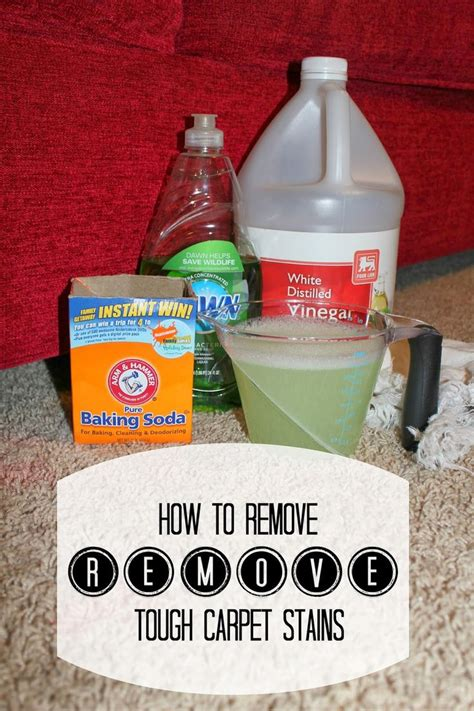 ideas  homemade carpet stain remover