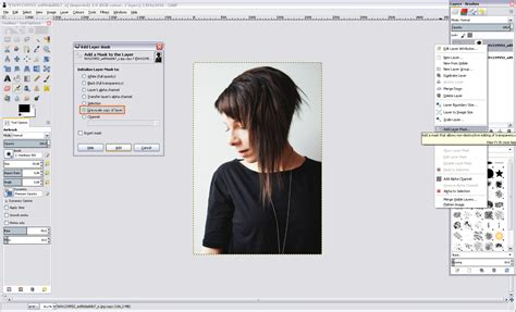 tutorial gimp layer tutorial gimp cut out remove background from hair