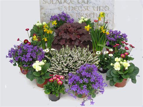 die 25 besten ideen zu nat 252 rlich dekorieren auf grabbepflanzung pflegeleicht bodendecker die besten 17