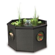 patio pond kit 1000 images about hydro aquaponics on