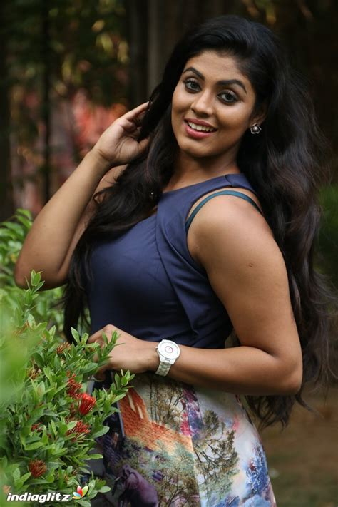 actress gallery india glitz iniya gallery bollywood actress gallery stills images