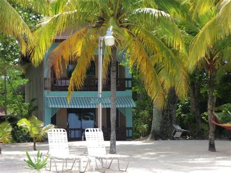 guestbook cocolapalm resort nirvana picture of cocolapalm resort negril tripadvisor