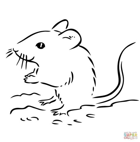 deer mouse coloring page deer mouse drawing www imgkid com the image kid has it