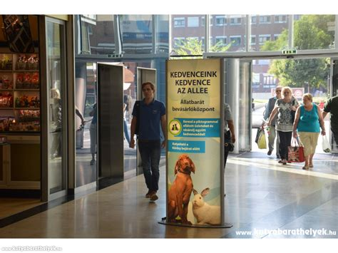 places that allow dogs friendly places allee shopping center