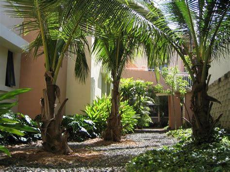 imagenes jardines residenciales gramaslindas inc fotos de jardin paisajista en palma