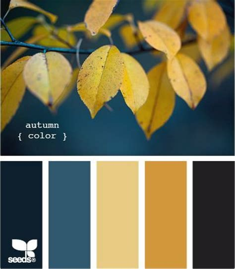 fall color schemes autumn color palette colors pinterest