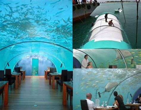 ithaa undersea restaurant the under water ithaa restaurant in maldives to be