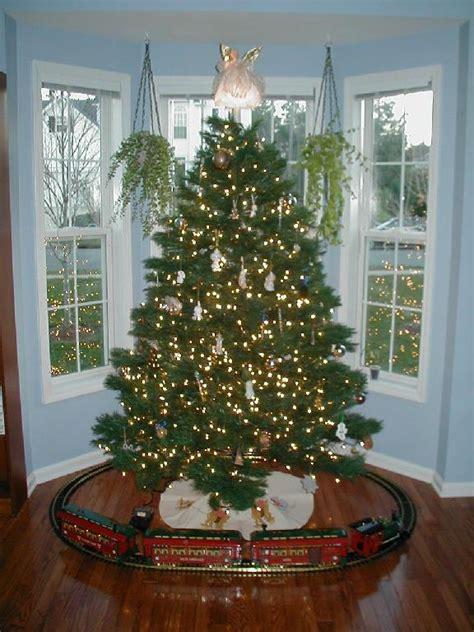 around the tree set i think tucker would a around the tree