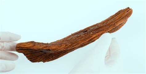 wooden boat year archaeologists find viking age toy boat in norway