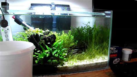 small aquarium aquascape small planted aquarium rescape using aquariumplantfood co