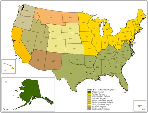 us forest service maps where to see springtime wildflowers lola s world