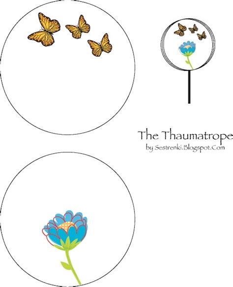 thaumatrope template printable thaumatrope printable www imgkid the image kid has it