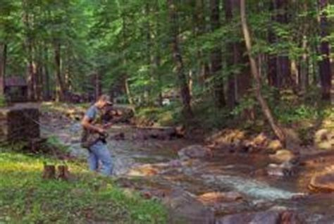 pa fish and boat trout regulations laurel highlands fishing information trout fishing