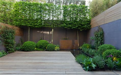Balcony Fruit Trees by 10 Best Outdoor Privacy Screen Ideas For Your Backyard