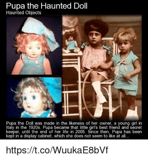 haunted doll pupa 25 best memes about haunted doll haunted doll memes