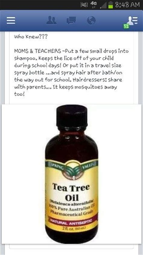 does tea tree oil kill lice 17 best images about tips for headlice on pinterest lice